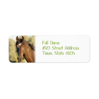 Morgan Horse Address Labels