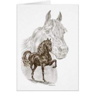 Morgan Horse Art Card