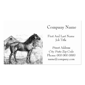 Morgan Horse Breed 1888 Vintage Drawing Art Double-Sided Standard Business Cards (Pack Of 100)
