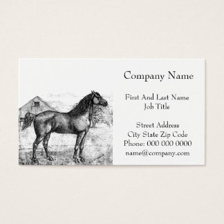 Morgan Horse Breed 1888 Vintage Drawing Art Business Card