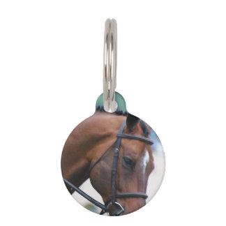 Morgan Horse Pet Name Tags