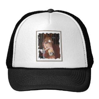 Morgan Horse Happy Trucker Hats