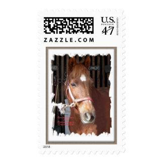 Morgan Horse Happy Postage