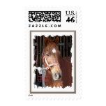 Morgan Horse Happy Stamps