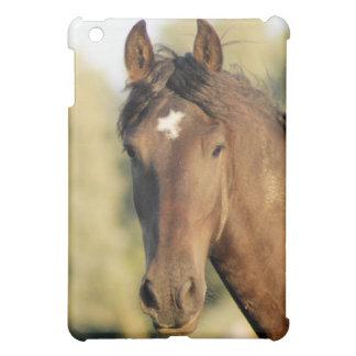 Morgan Horse iPad Case