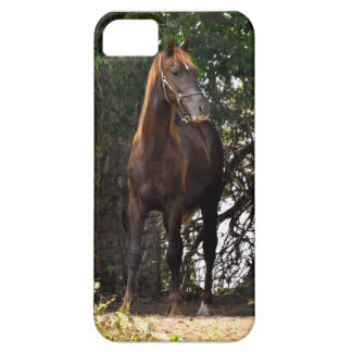 Morgan Horse iPhone SE/5/5s Case