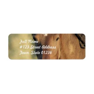 Morgan Horse Mailing Labels