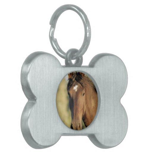 Morgan Horse Pet Tag