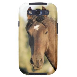 Morgan Horse Phone Case Samsung Galaxy S3 Cover