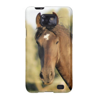 Morgan Horse Phone Case Galaxy S2 Cover