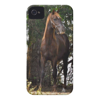 Morgan Horse Products!! Case-Mate iPhone 4 Case