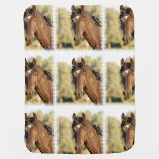 Morgan Horse Swaddle Blankets