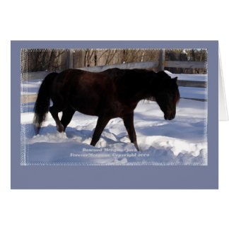 Morgan Horse Winter Wonderland Blank Card