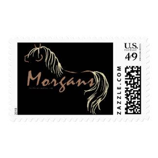 Morgan Horses Postage