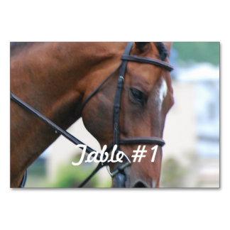 Morgan Horses Table Cards