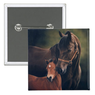 Morgan Mare and Foal Pinback Button