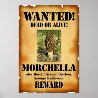 Morilla - muertos o vivo queridos póster