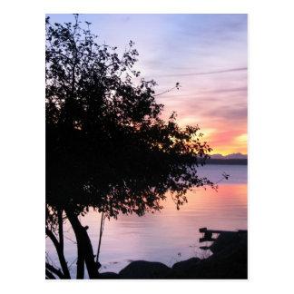 Moring on The Bay Postcard