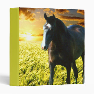 "MORISCO AT SUNSET 1"" Ring Binder"