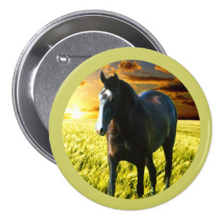 MORISCO AT SUNSET 3 INCH ROUND BUTTON