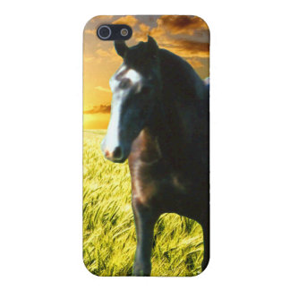 MORISCO AT SUNSET iPhone SE/5/5s CASE