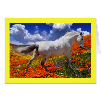 MORISCO IN SPRING FLOWERS CARD