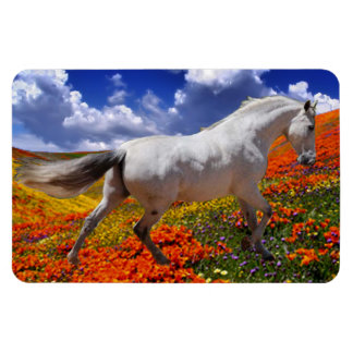 MORISCO IN SPRING FLOWERS Magnet