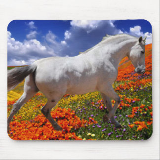 MORISCO IN SPRING FLOWERS MOUSE PAD