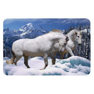 MORISCO & OSADA SNOW PLAY Magnet