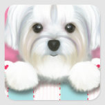 MORKIE SHELLY SQUARE STICKERS