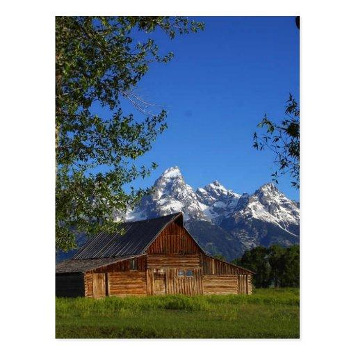 Mormon Row Barns In Grand Teton Park Postcard