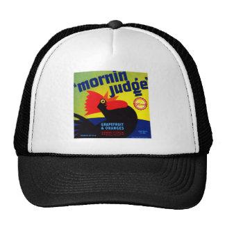 Mornin Judge Grapefruit and Oranges Hats