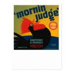 Mornin Judge Grapefruit and Oranges Post Card