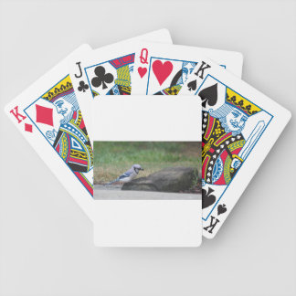 Morning Blue Jay Bicycle Poker Deck
