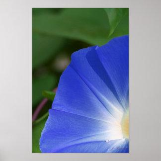 Morning Blue Poster