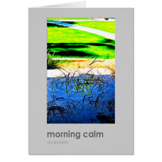 morning calm note cards