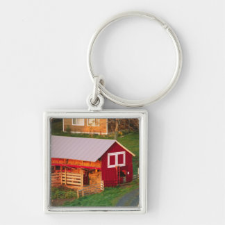 Morning chores on the farm. USA, Vermont, Keychain