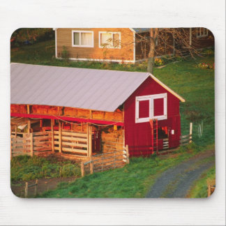 Morning chores on the farm. USA, Vermont, Mouse Pad