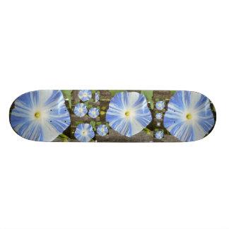 Morning Close up. Skate Board Deck