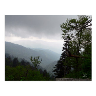 Morning Clouds Over Clingman's Dome Postcard