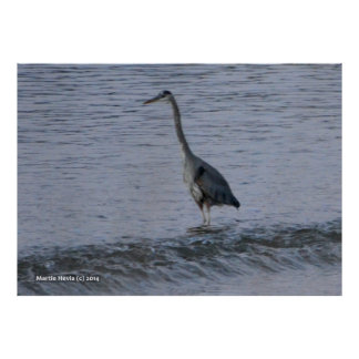Morning Crane by the Shore Print