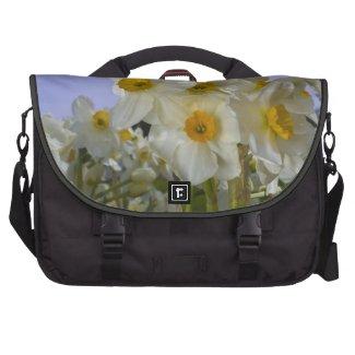 Morning Daffodils Laptop Bag