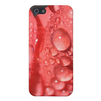Morning Dew Case For iPhone SE/5/5s
