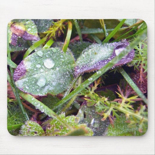 Morning Dew Mouse Pad