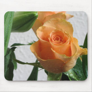 Morning Dew on Apricot Rose Mouse Pads