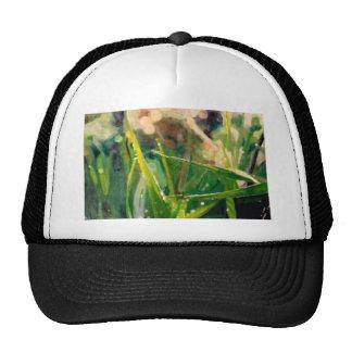 Morning Dew On Grass Mesh Hat