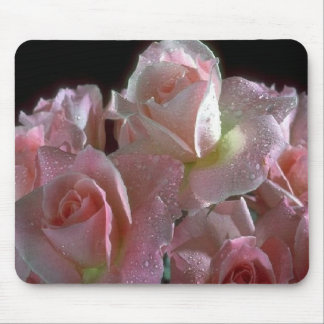 Morning dew on pale pink roses pink-roses mouse mat
