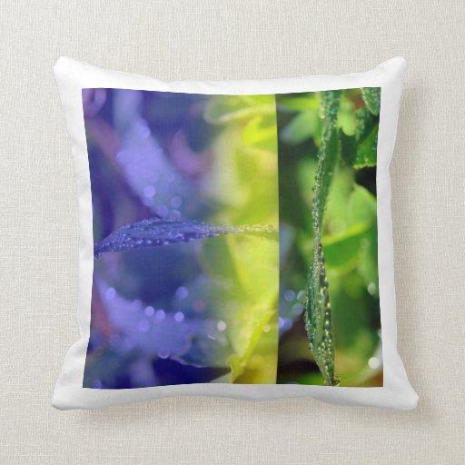 Morning dew pillows