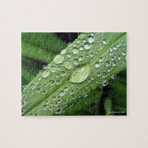 Morning Dew Puzzle