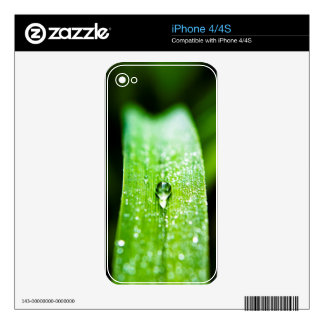 Morning Dew Water Droplet iPhone 4 Skins